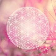 Reiki - Alternative Therapiemethode ohne Nebenwirkungen  Foto: © reichdernatur @ Fotolia