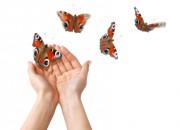 Liebe und endlich wieder Schmetterlinge im Bauch Foto: © Anna Khomulo @ Fotolia