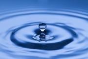 Wasserlesen – Eine uralte Kunst neu entdeckt  Foto: © Amir Kaljikovic @ Fotolia
