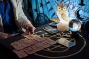 Karmabeziehung mithilfe der Karten offenbaren Foto: © zummolo @ Fotolia