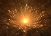 Meditation - Der Weg zu einem besseren Körpergefühl Foto: © @